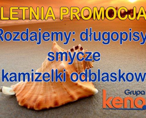 Letnia PROMOCJA2 495x400 - Letnia promocja - kolejne kursy na wózki widłowe 01 i 08.08.2016!